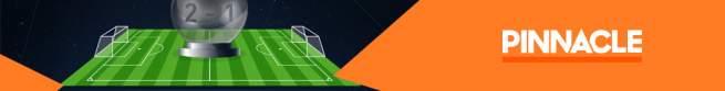 Pinnacle Sport banner